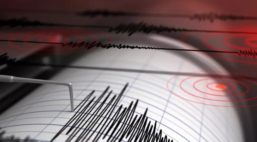 Potres Seizmografi
